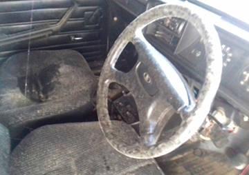 Превью статьи: Плесень в салоне автомобиля