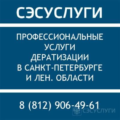 Услуги дератизации в СПб
